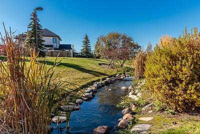 Arbor Creek