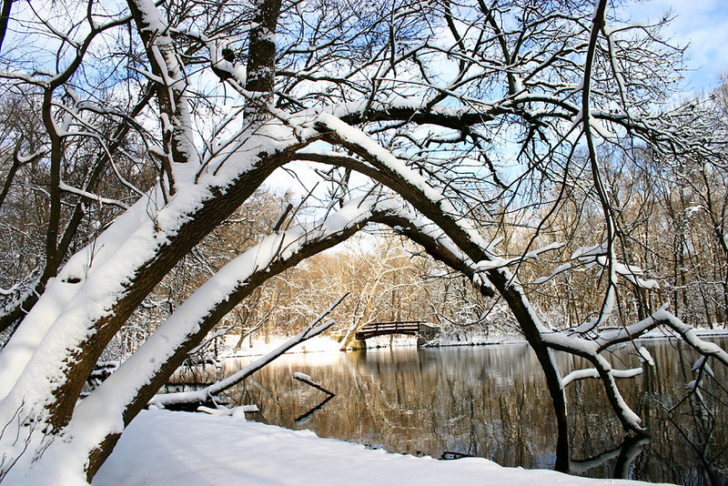 Fullersburg Woods winter, Hinsdale, Illinois