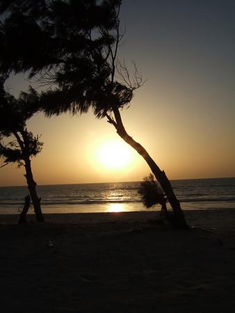 Senegal November 2008