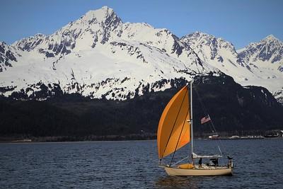 """Yellow Sail"" (photography) by Kathy Brady"