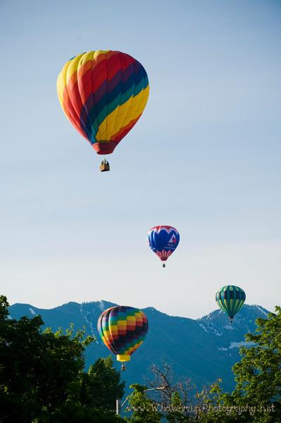 20090612_Balloons_1916.jpg