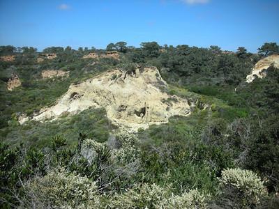 2011 April - Torrey Pines