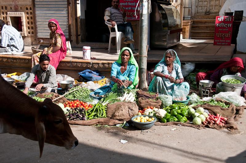POW Day 5-_DSC3493- Jaisalmer.jpg