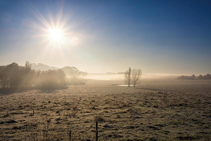 Frosty Field Moss Vale.tif