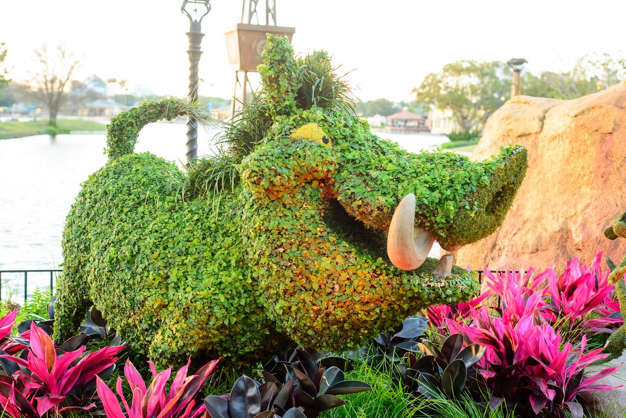 Pumbaa Topiary - Epcot Flower & Garden Festival 2016