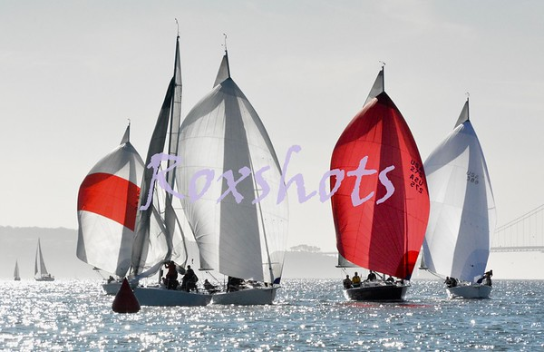 Regatta Pro Midwinter #4 with SYC, Race #7, 2/8/2020