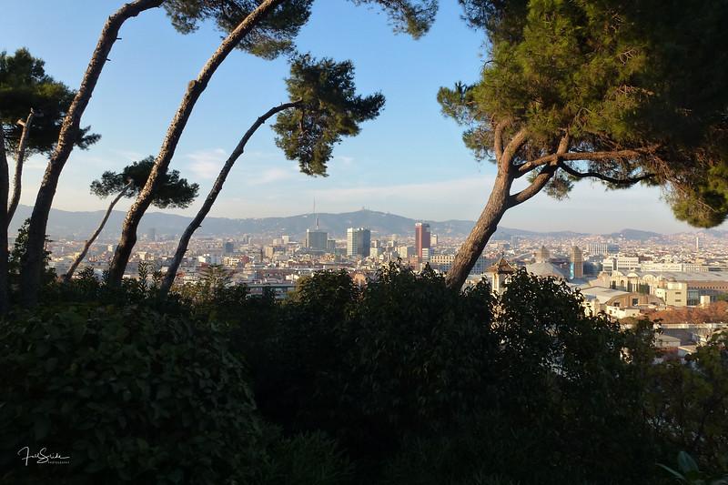 Barcelona December 2013-37.jpg