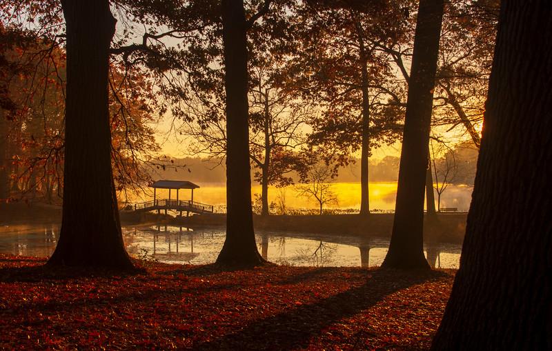 Wingfoot-Lake-Fall3.jpg