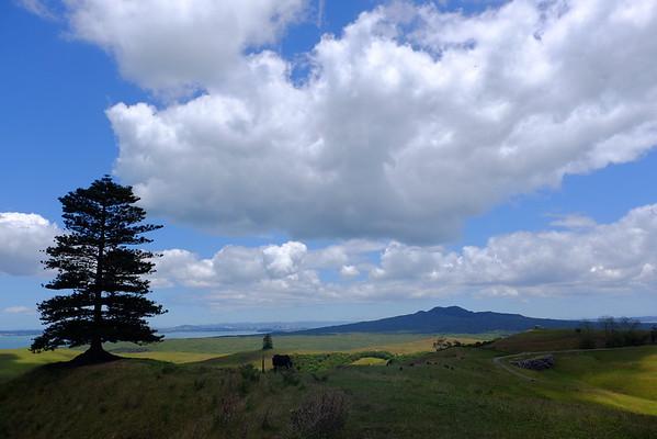 Rangitoto and Motutapu