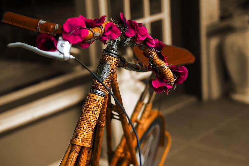 P9240019_Flower Power.jpg