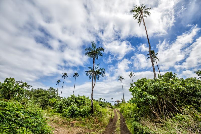Taveuni Fiji
