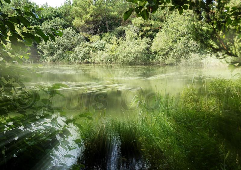 © Courtot Luis, Lac de Lacanau