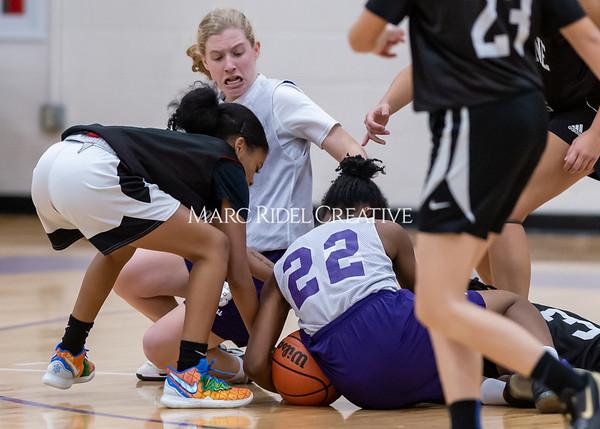 Broughton girls basketball vs Wake Forest. November 14, 2019. D4S_0045
