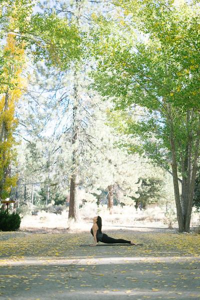 Toni Kuhn Yoga Photography Pine Mountain Club-50.jpg