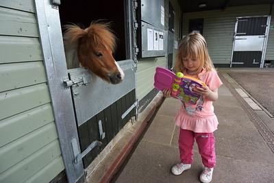 Rest Home for Horses June 2015