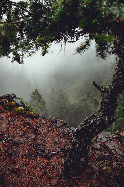 A Day in the PNW_14.JPG