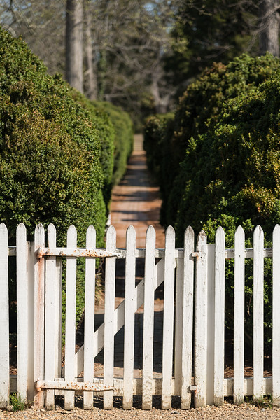 Colonial Gardens in Colonial Williamsburg Virginia