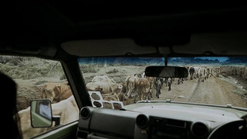 Tu-Nguyen-Destination-Wedding-Photographer-Kenya-Masai-Mara-Elopement-Doris-Sam-130.jpg