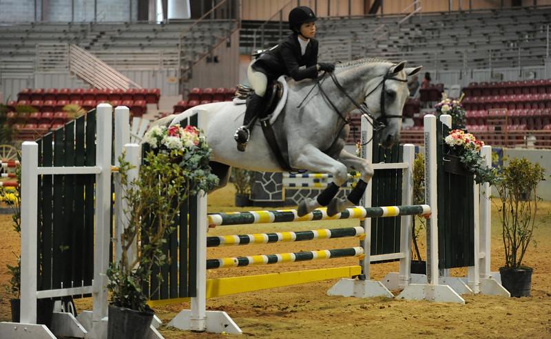 Horse show (65).jpg