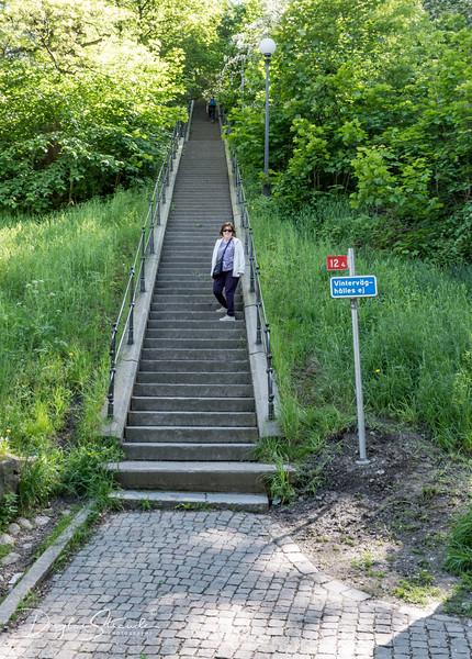 Starting the climb to Skansen Kronan