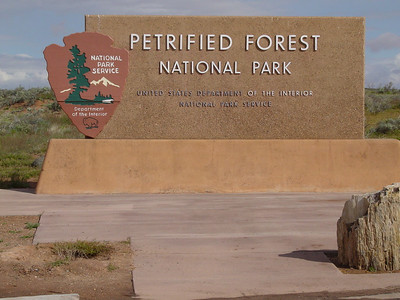 Petrified Forest NP 2005