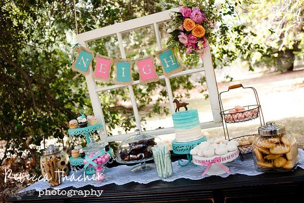 Poshitively Perfect Events . Cassidy's Birthday