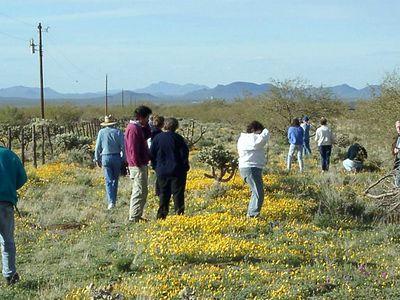 Cactus & Succulent Society