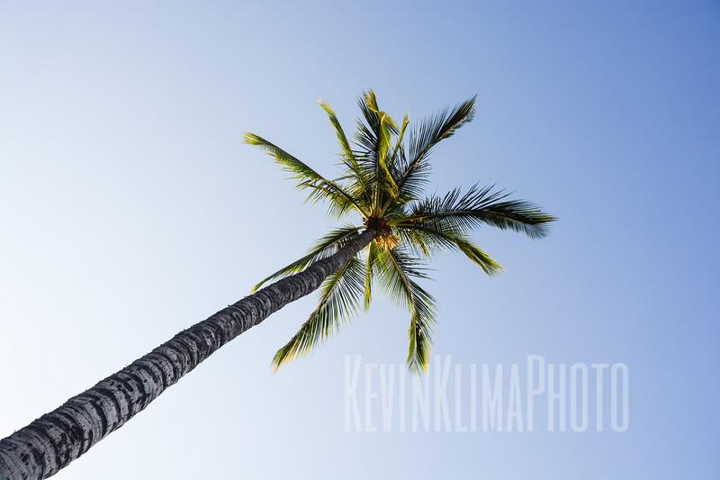 Maui23.jpg