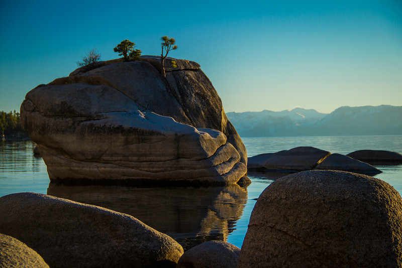 Bonsai Rock South