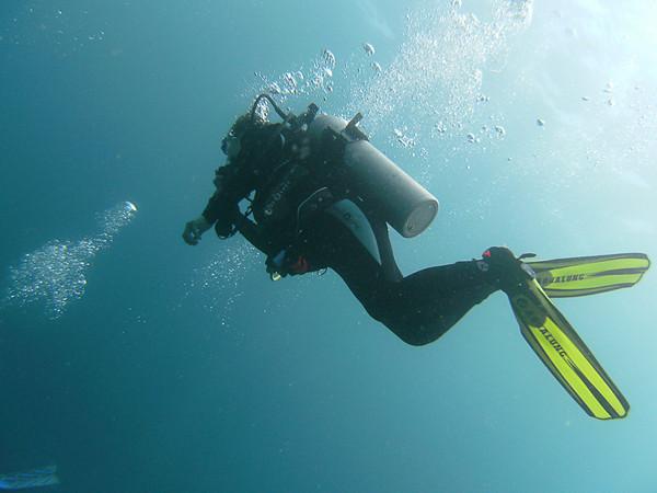 Utila Group and Underwater Photos