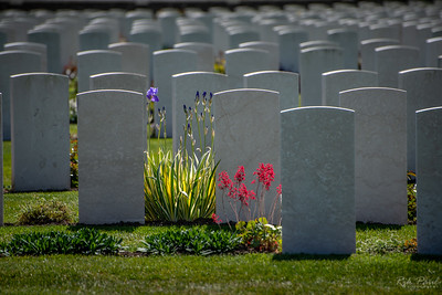 """Remembering """"The Great War"""""""