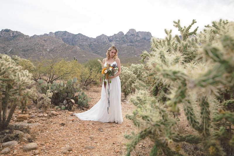 Nick and Charlotte Nelson Wedding-3561.jpg