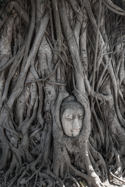 Thailand and Cambodia-5.jpg