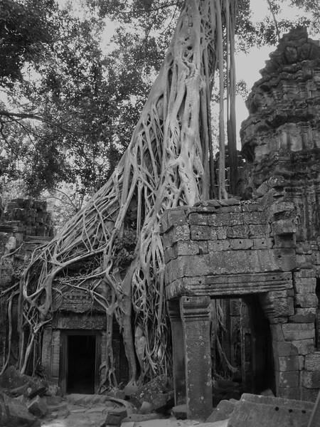 Images from Angkor Wat (35).JPG