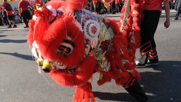 At the Golden Dragon Parade
