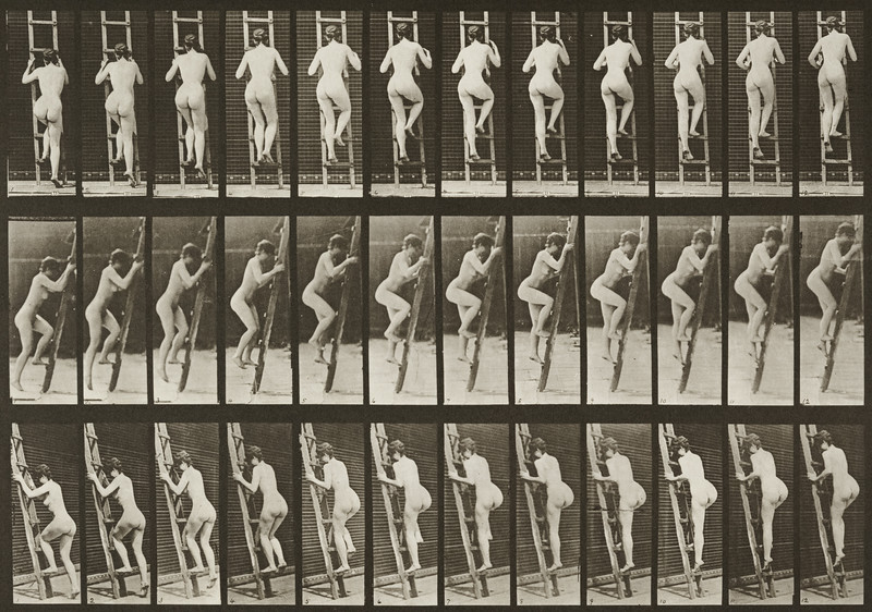 Nude woman ascending a ladder (Animal Locomotion, 1887, plate 112)