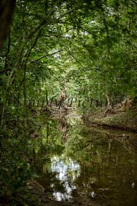 Banita Creek  (14)