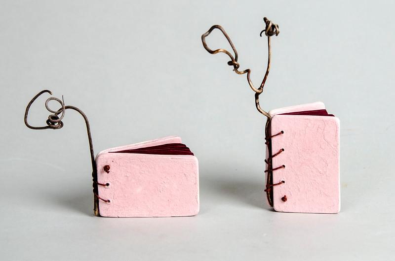 5_Maydanik_2 pink books.jpg