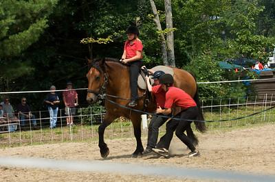 Bolton Fair 2009 - Dale Perkins Horse Show