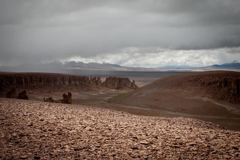 Atacama 201202 Salar de Tara (138).jpg