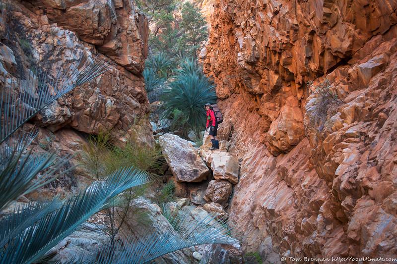 Rachel higher up in the gorge