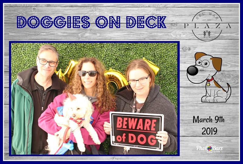 Doggys on Deck57.jpg
