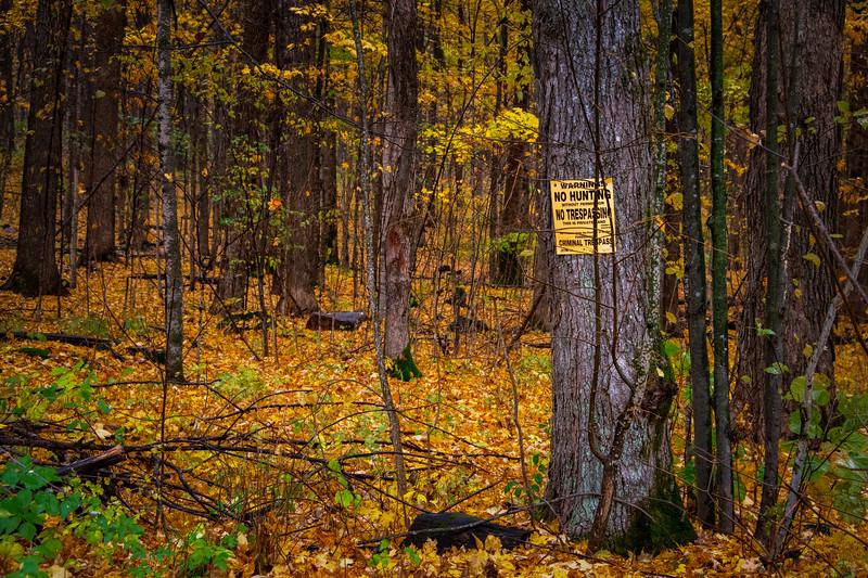 No Hunting. No Trespassing.