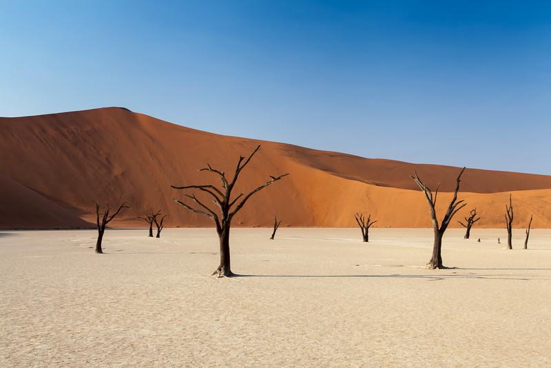Namibia-29.jpg