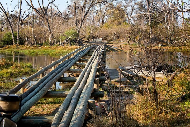 2014-08Aug-Okavango Masters-16-Edit.jpg