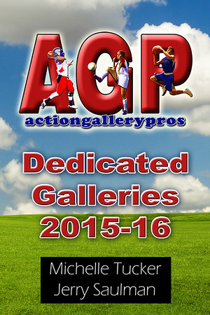 DEDICATED GALLERIES 2015-16