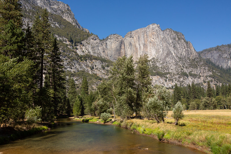 WVWS_Yosemite National Park-5806.jpg