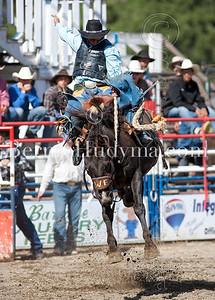 BareBack & Saddle Bronc