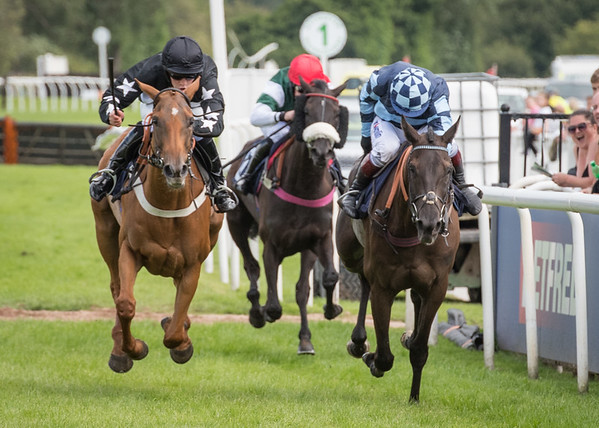 Uttoxeter Races - Sun 30 April 2017