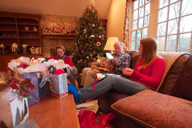 Sudbury Christmas 2014 22.jpg